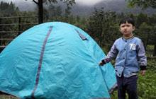 7天森林营地夏令营