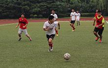 上海21天足球夏令营