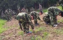 28天小将军未来领袖塑造夏令营