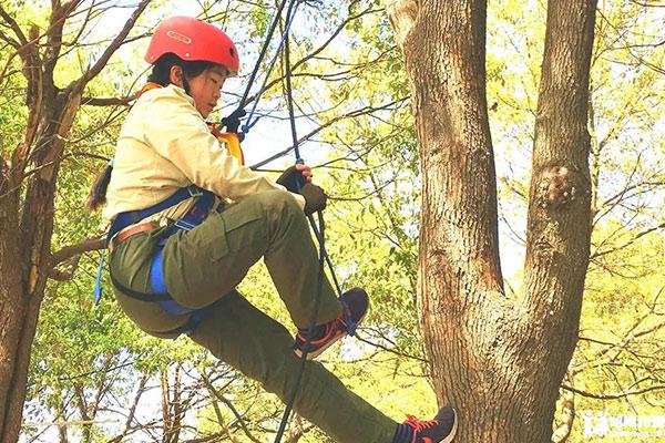 上海儿童攀树技能训练营