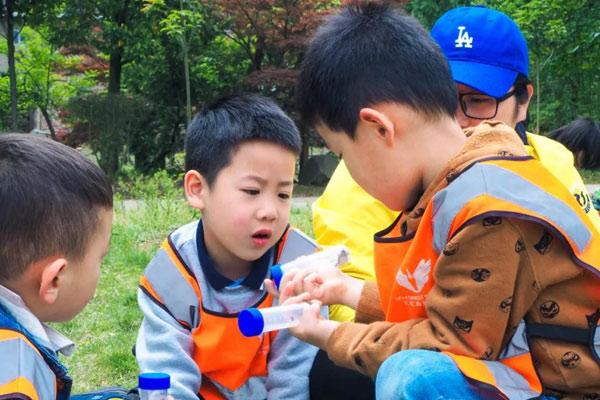 杭州幼儿园夏令营价格参考,怎么收费一看即知