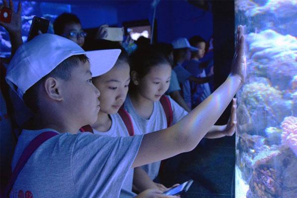 广州研学夏令营怎么收费?开启孩子行走的课堂